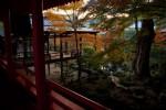 旅行のコピー、京都